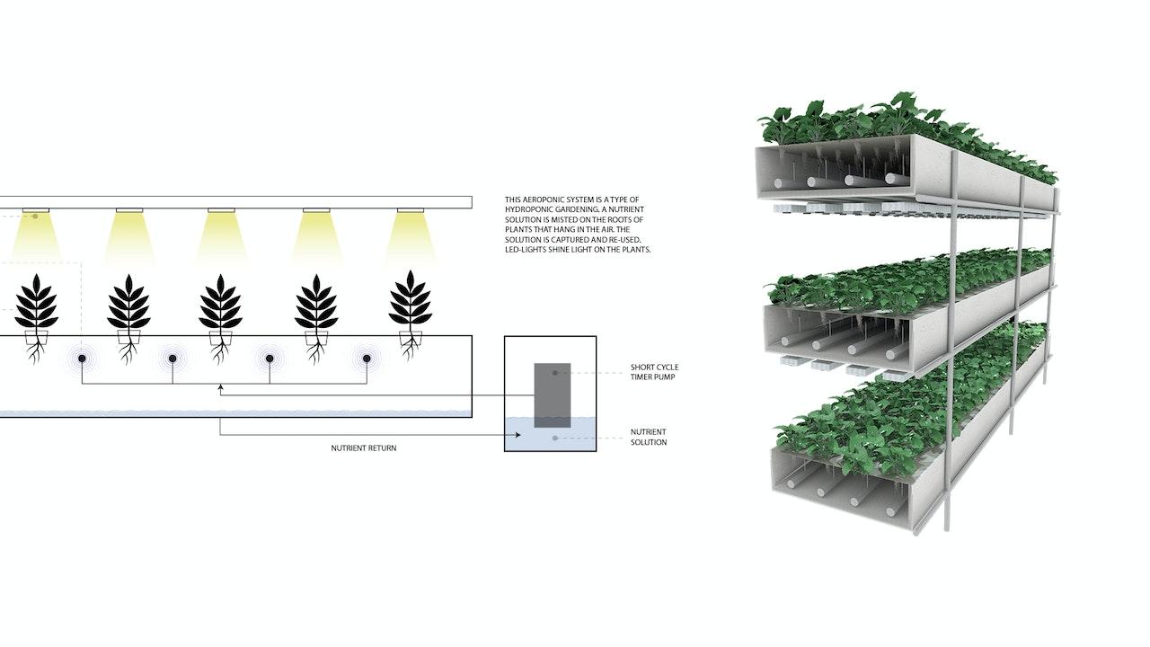 Hyrdoponic farming