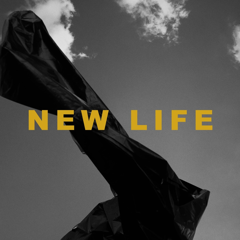 LP ARTWORKS - LoEb THERE IS NEW LIFE ON PLANET HEART