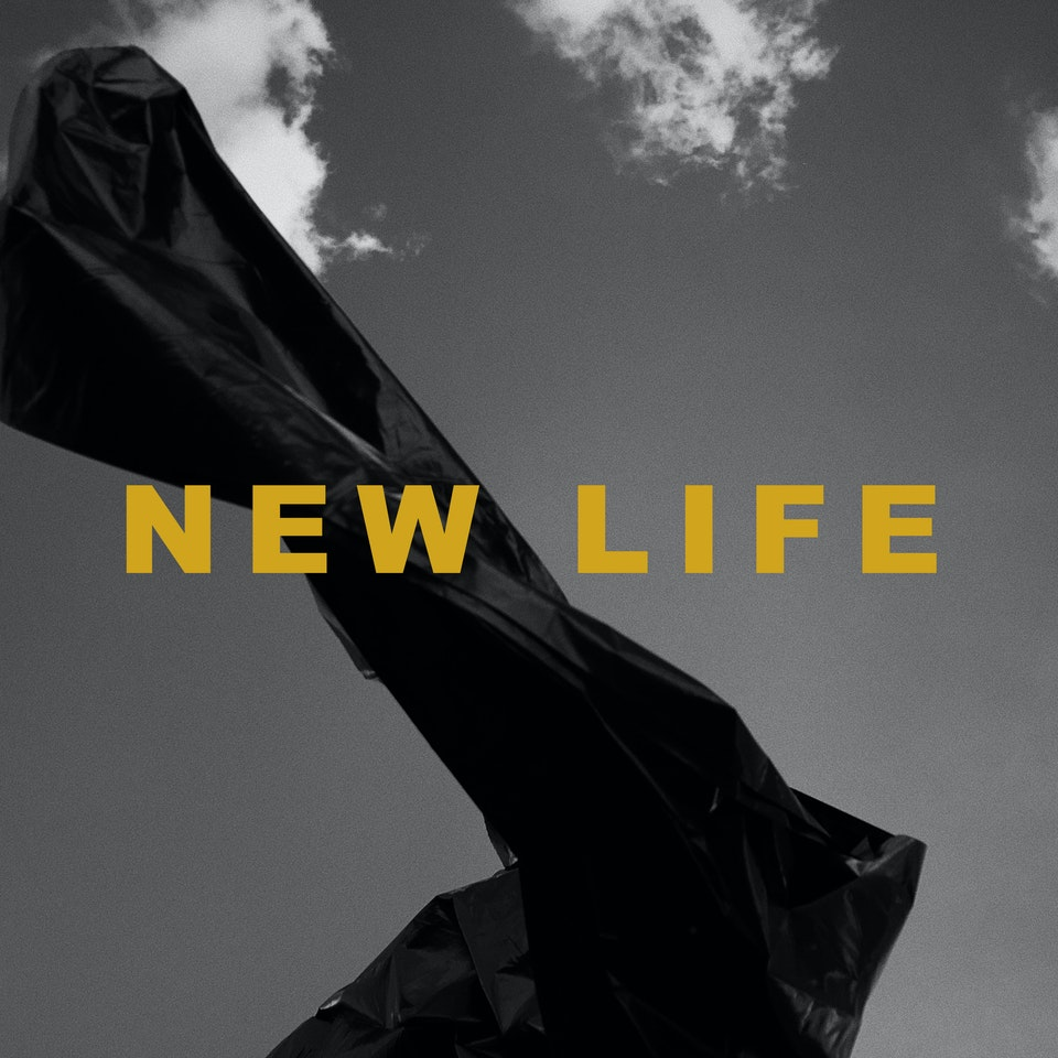 Daniel Marini - LP ARTWORK - LoEb