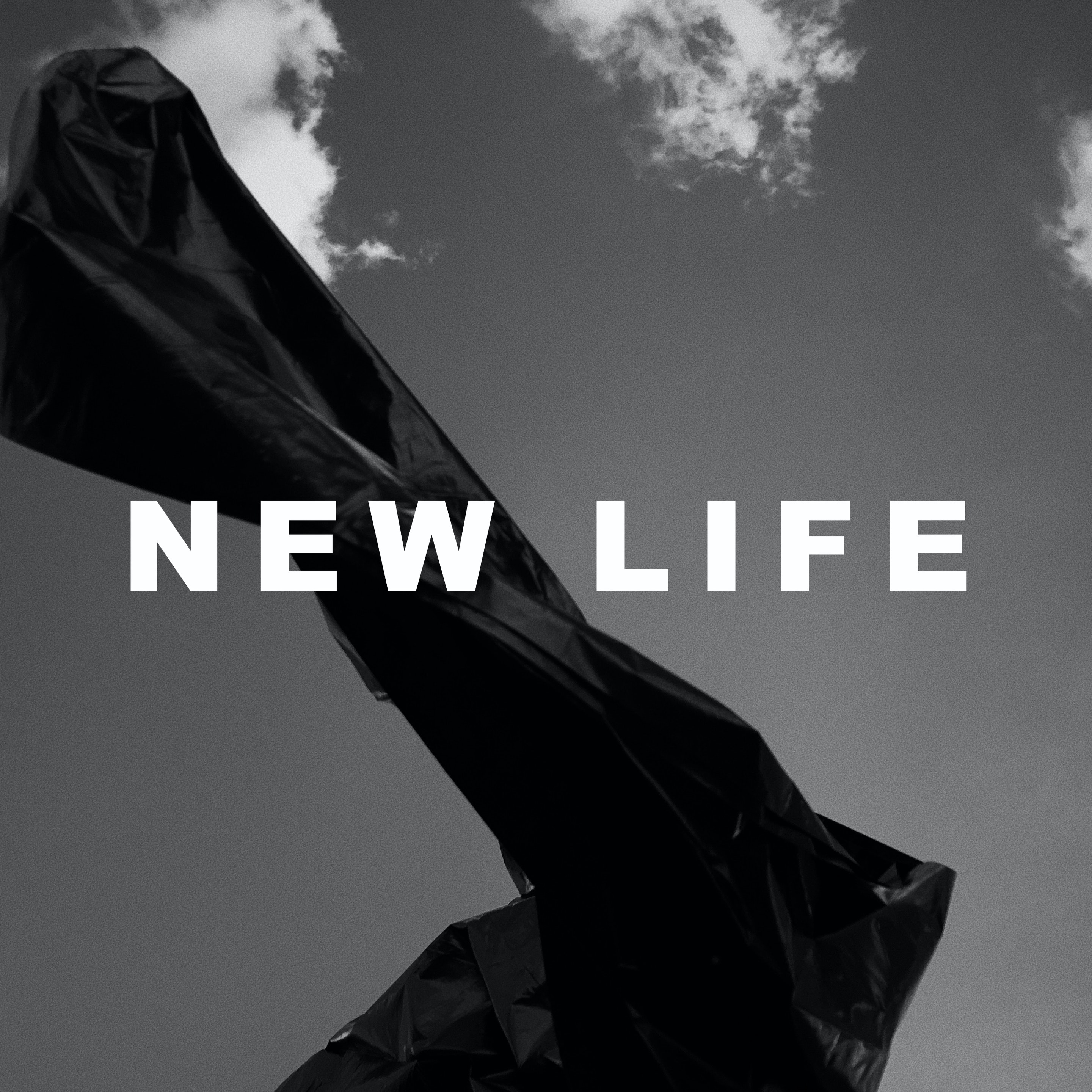 Daniel Marini - NEW LIFE WHITE LARGE