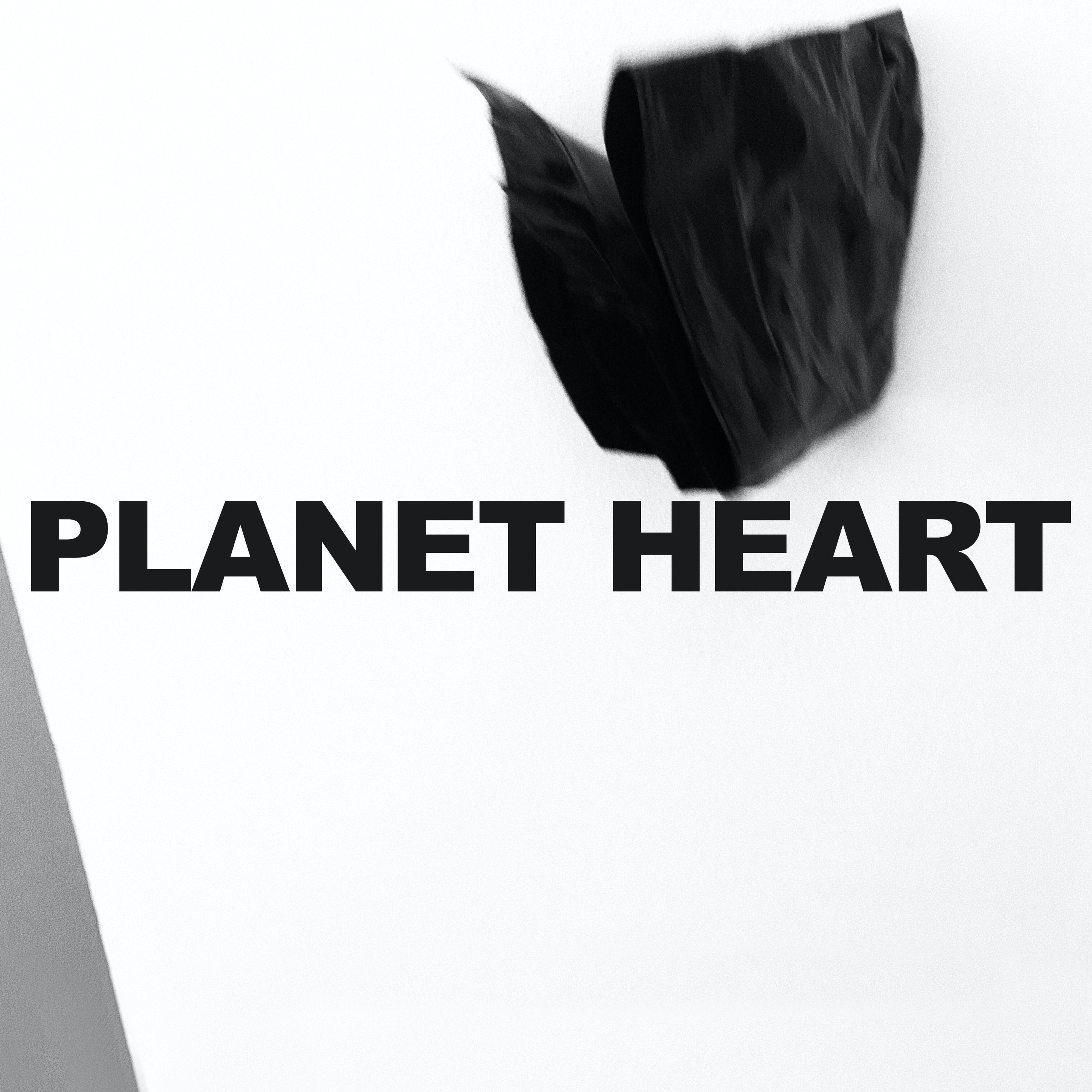 Daniel Marini - PLANET HEART BLACK