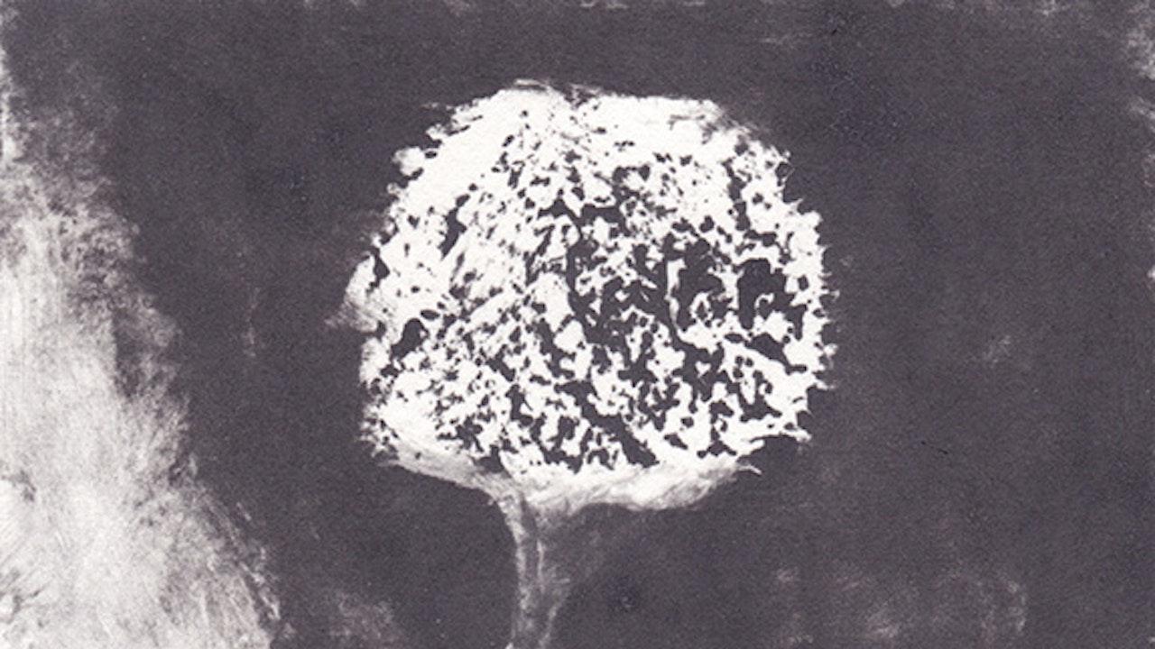 2012-monotype_abtsraction_11x15cm