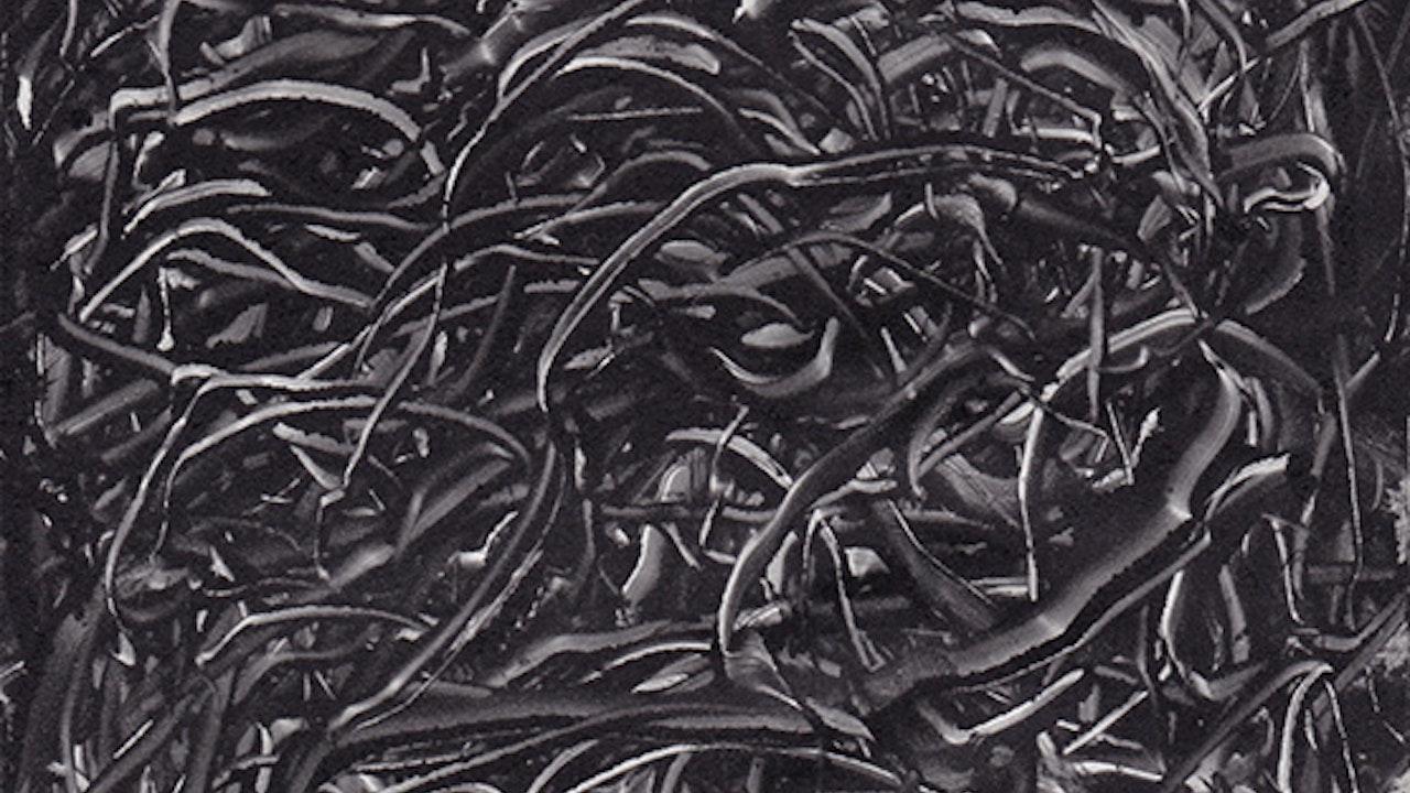2008-monotype_abstraction_12x17.5cm