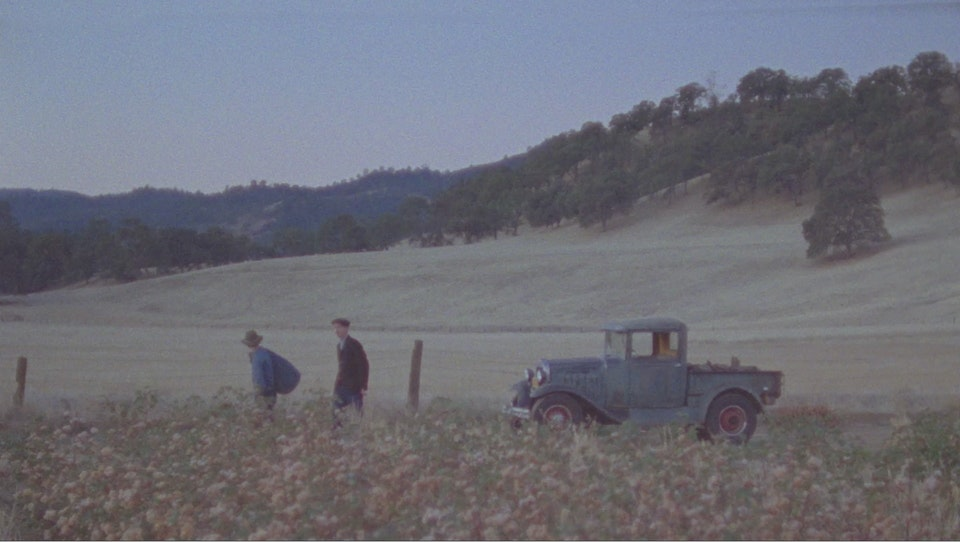 "Men's File ""American Cotton"" - AC_008"
