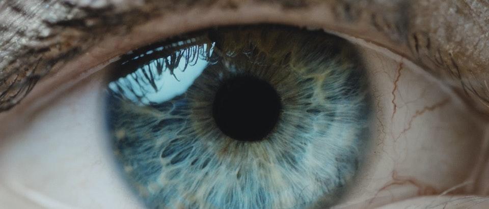 Jake Betteridge - SHE | A journey through the human experience.