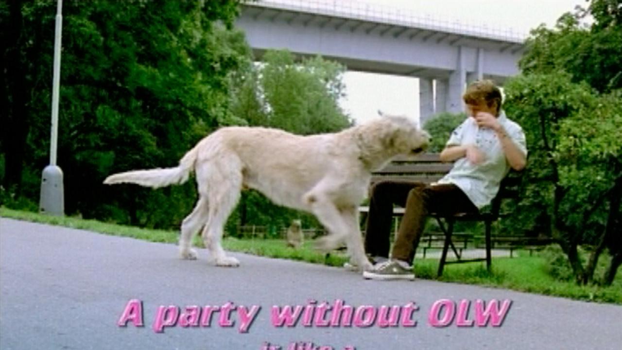 OLW - Date