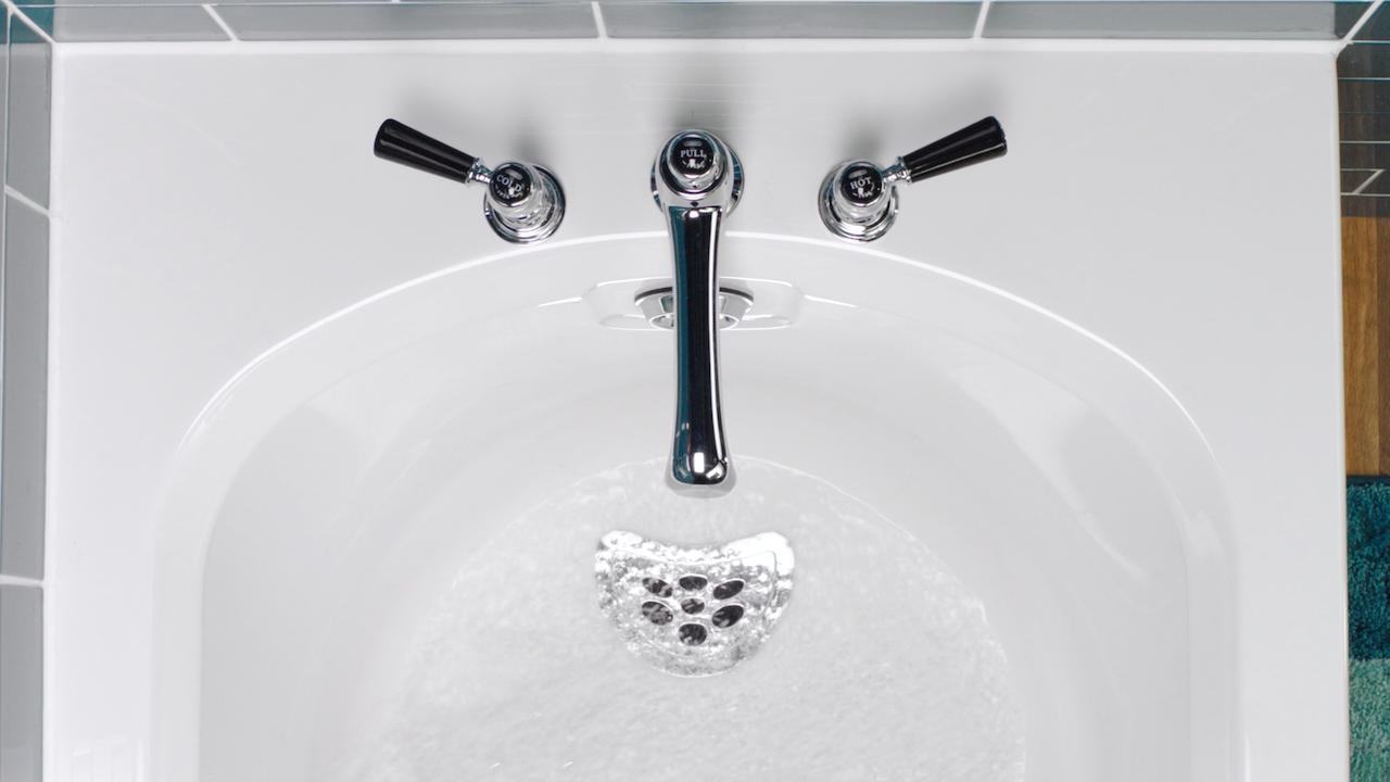 Buster - Bathroom Unblocker