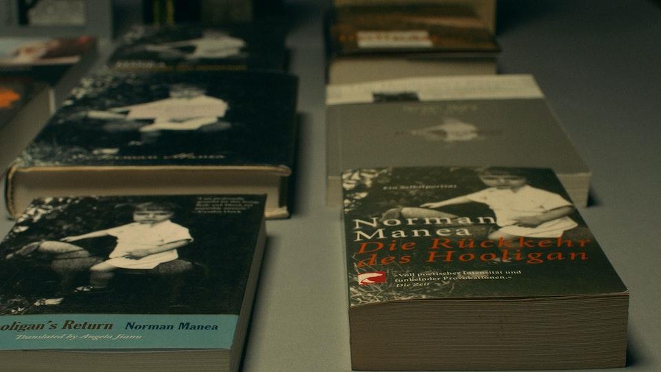 Norman Manea: 25 Years in Translation