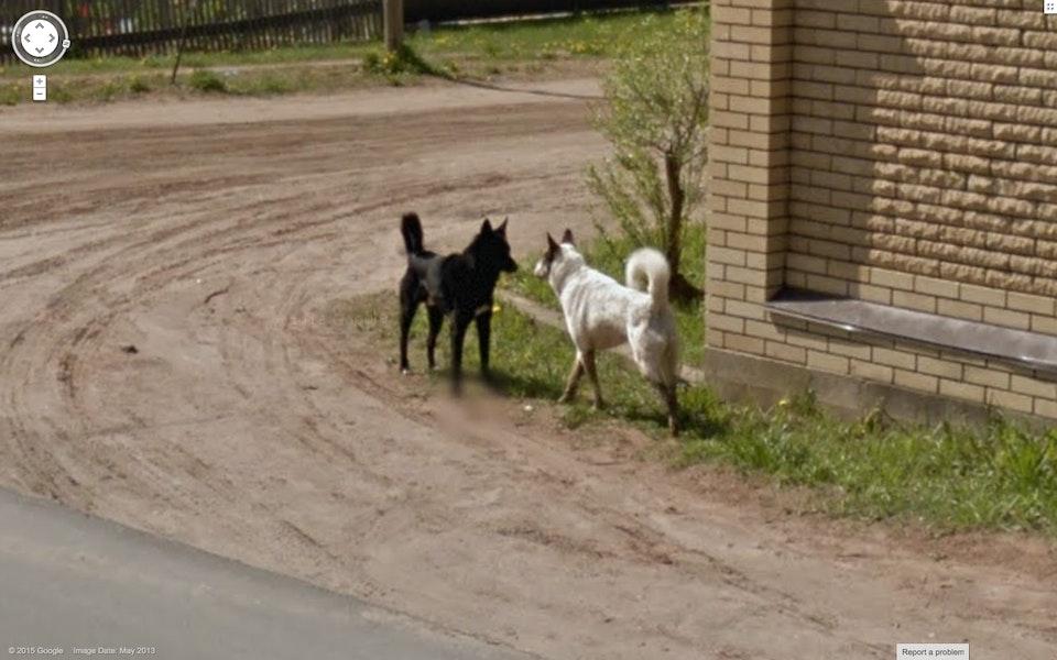 Google Streetview Samuel Craven 12