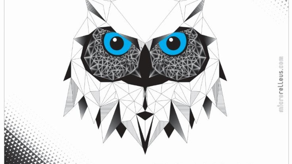 OWL BOX: Surface Design - Digital vector illustration