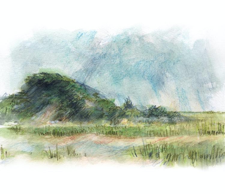Herring Cove Dunes 02_EDIT LANDSCAPE