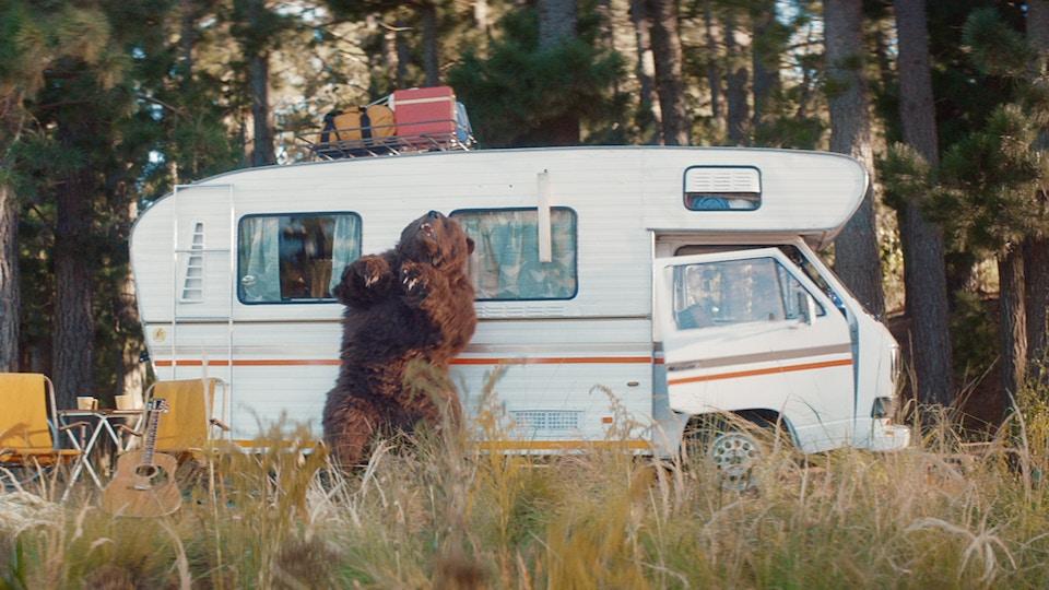 Sunny 'Bear Vs Camper' | Ben Gregor | Knucklehead