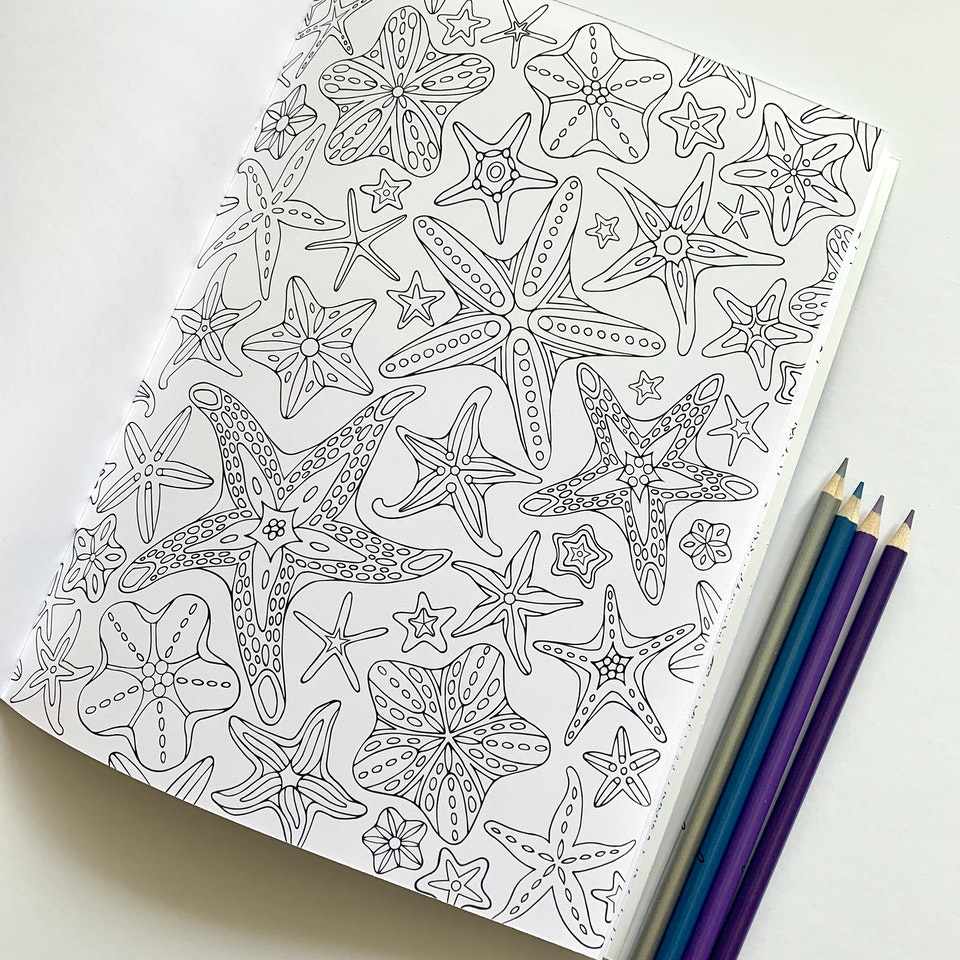 Under the Sea Coloring Book