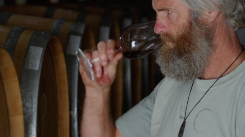 Central Otago / Wine