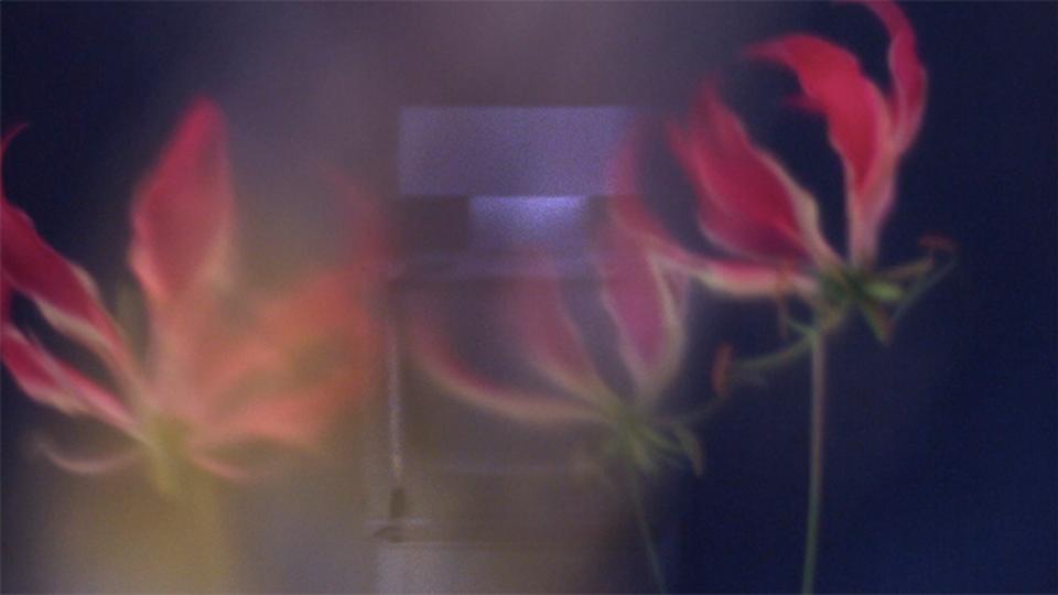 U turn PH - Narciso Rodriguez Perfume