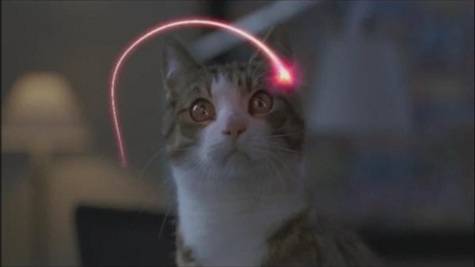 "Darty ""Cat"""
