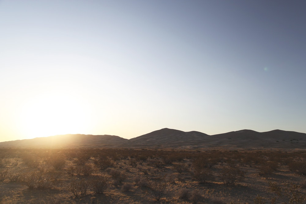JAMES COOPER - Mojave_004