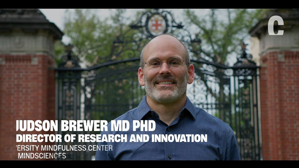 JUDSON BREWER - VICE