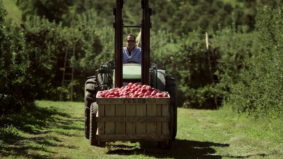ShopRite Apples
