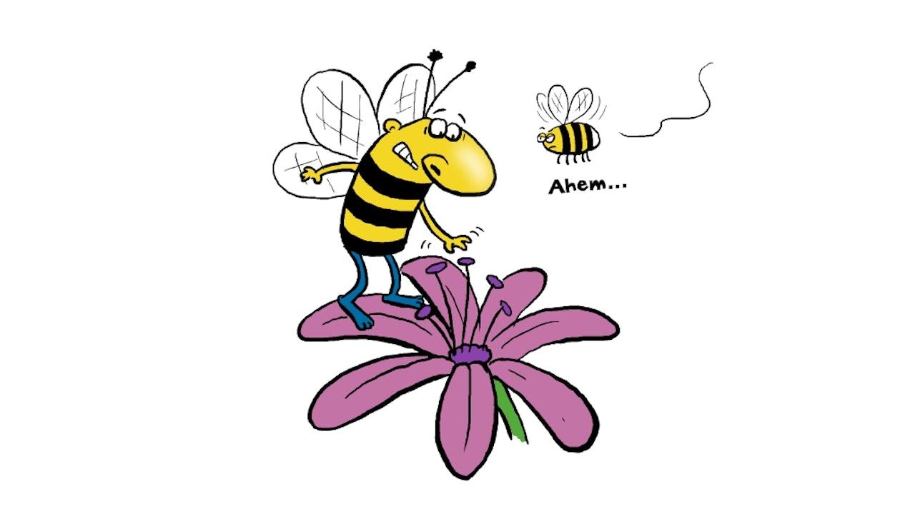 Marty_Bee