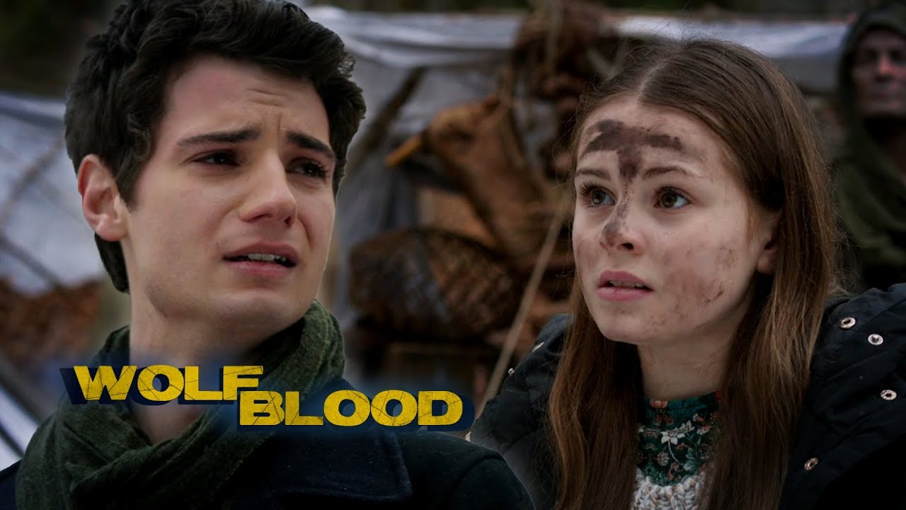 TV - WOLFBLOOD  - The wild at heart
