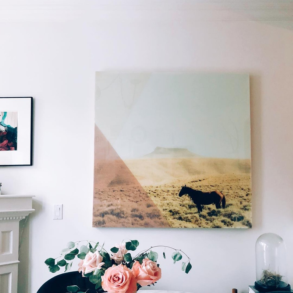 IN SITU WEST // STALLION