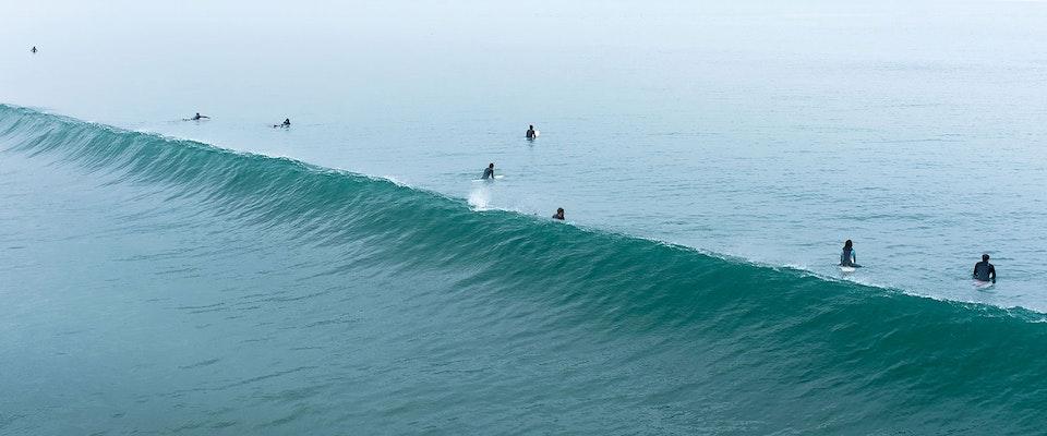 CHRISTINE FLYNN - VENICE SURFERS