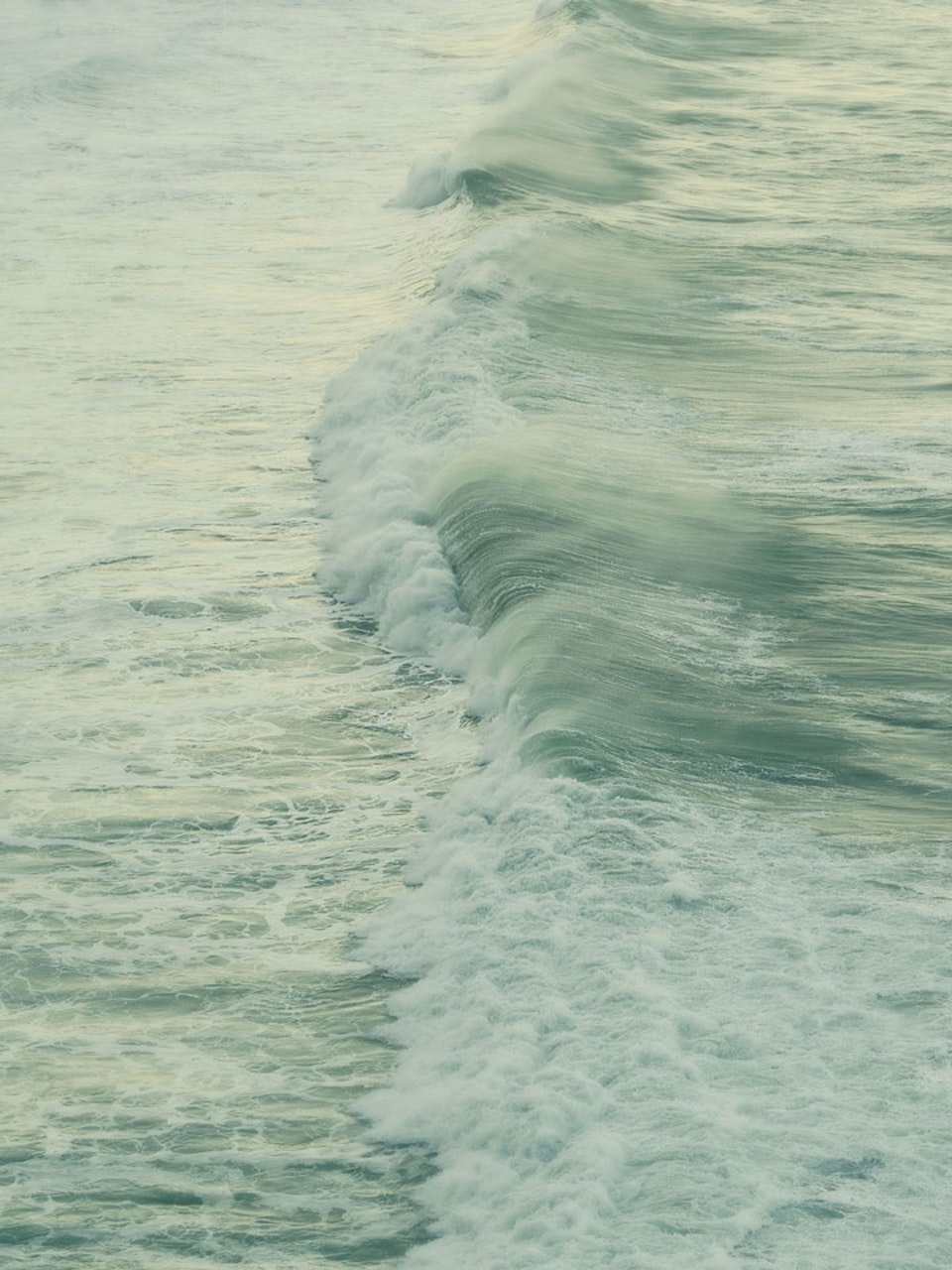 CHRISTINE FLYNN - WAVE