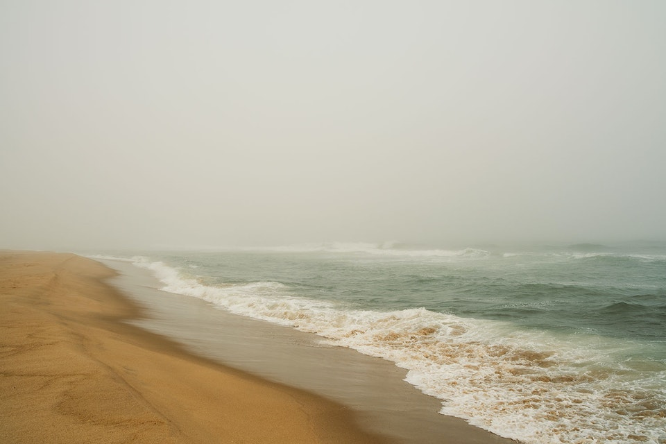 CHRISTINE FLYNN - FOGGY HAMPTONS