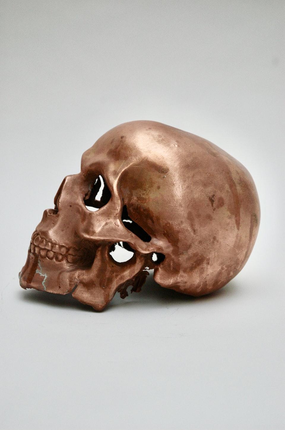 Copper Skull 357F6EC9-8EE2-4400-AB2C-7FF622456C3E_1_201_a