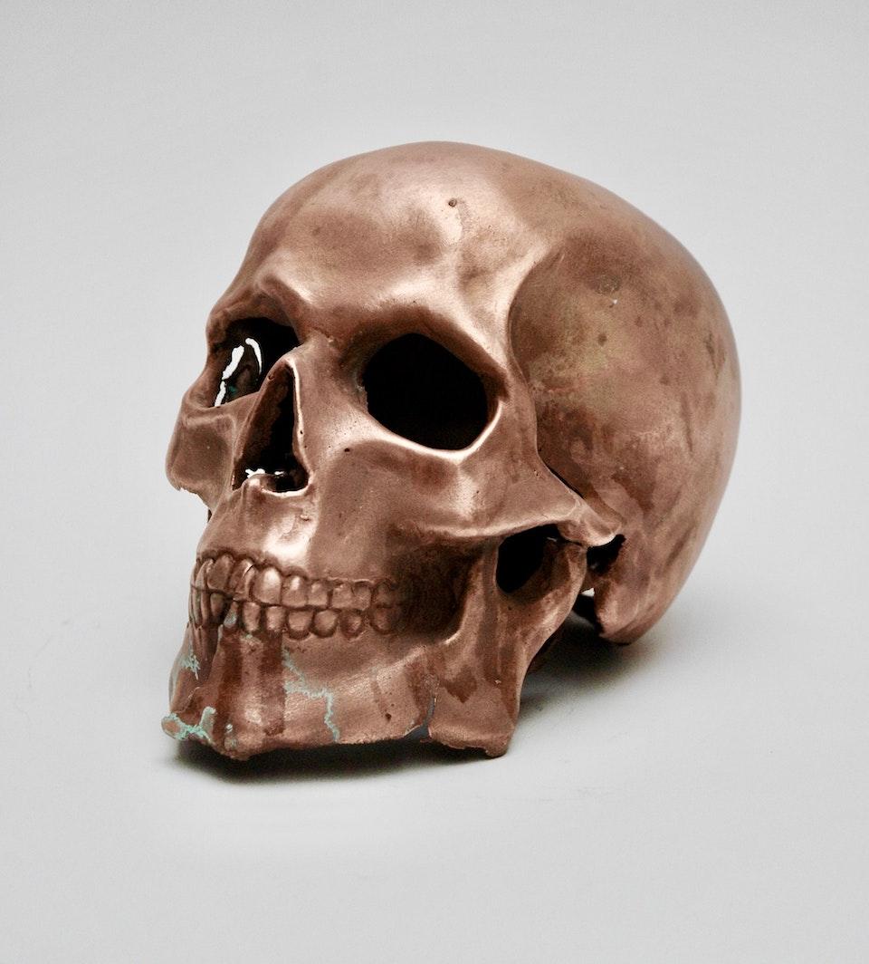 Copper Skull 83865021-803D-4F55-B453-B5964282AEC0_1_201_a