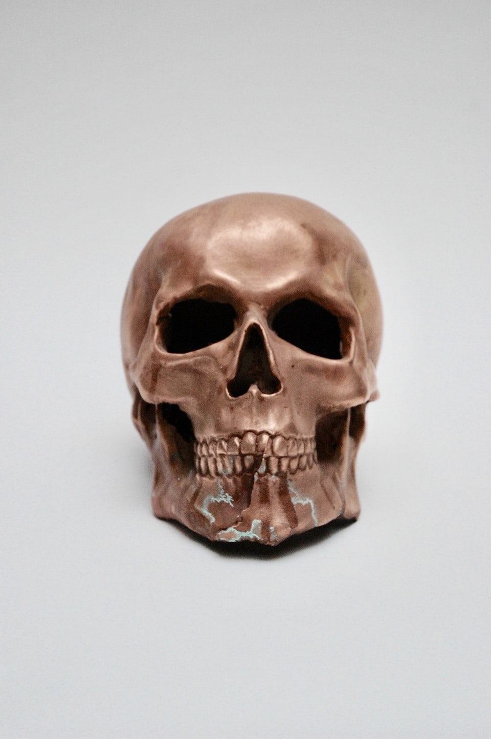 Copper Skull 4C47597C-BEC4-4138-A412-4635F0B641BC_1_201_a