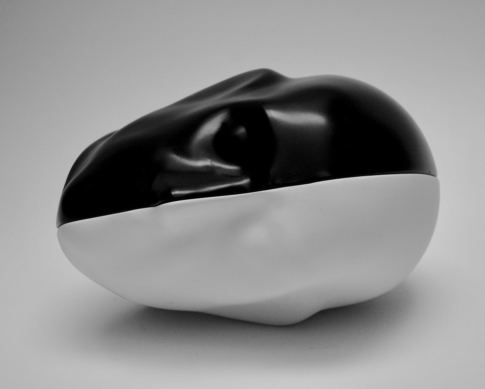 Black and White Head 7745F7AB-BC59-45A3-9349-23783297F837_1_201_a