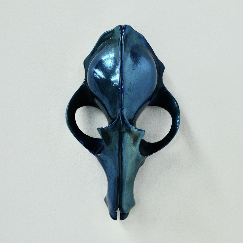 Richard Mackness - Blue Fox Skull