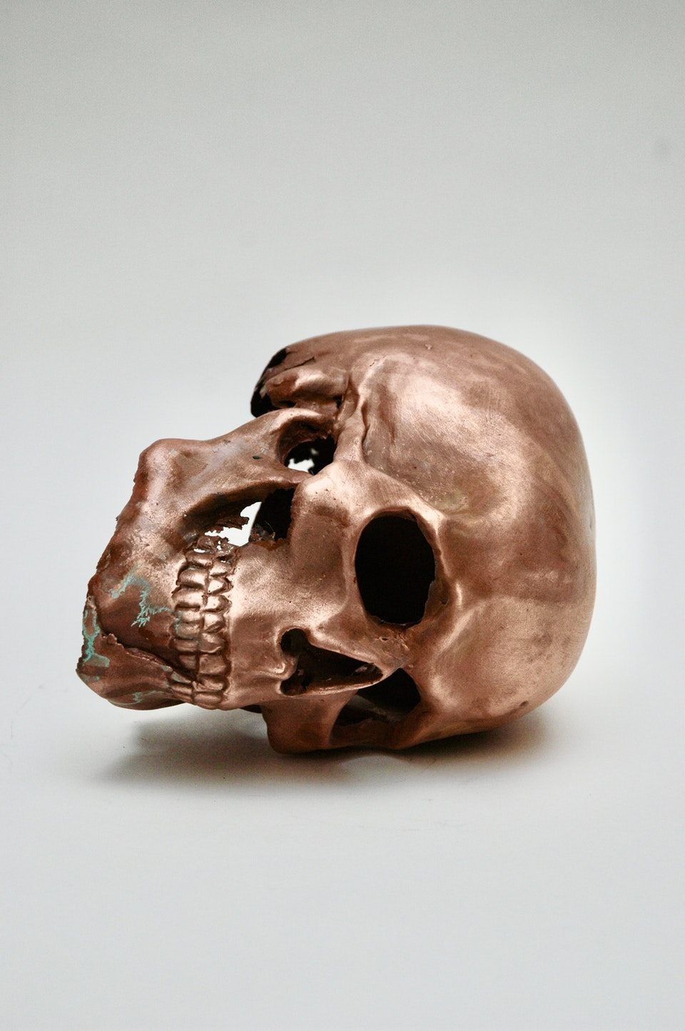 Copper Skull DCBF9C3E-5103-47C4-BD45-6EF417EF709A_1_201_a