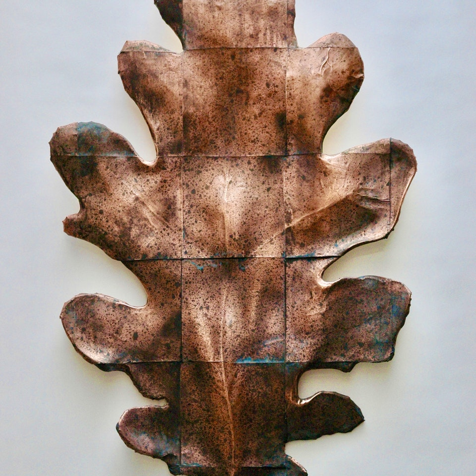 Richard Mackness - Copper Oak Leaf gridded