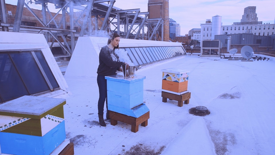 This Woman Will Put Bees in Your Office