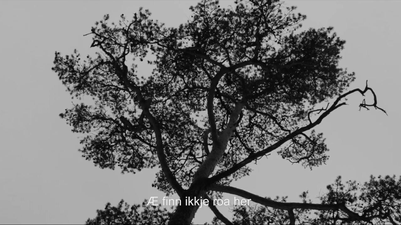 Kristian Kristensen - Du ga mæ viljestyrke (Official Lyric Video) -