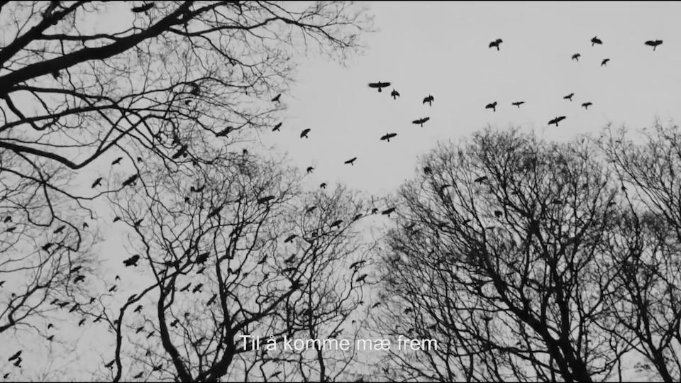 Kristian Kristensen - Du ga mæ viljestyrke (Official Lyric Video)