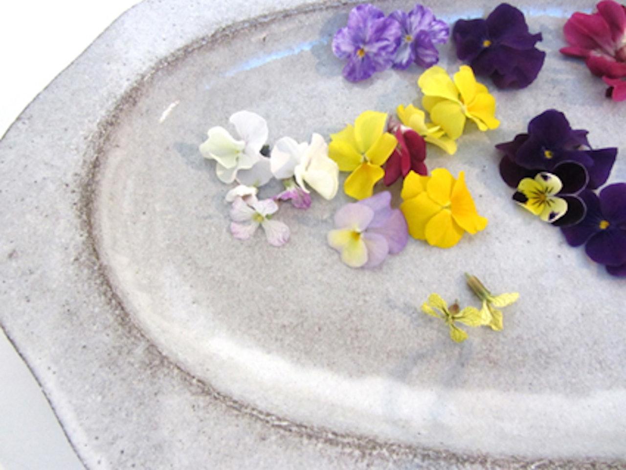 taste of spring....edible flowers