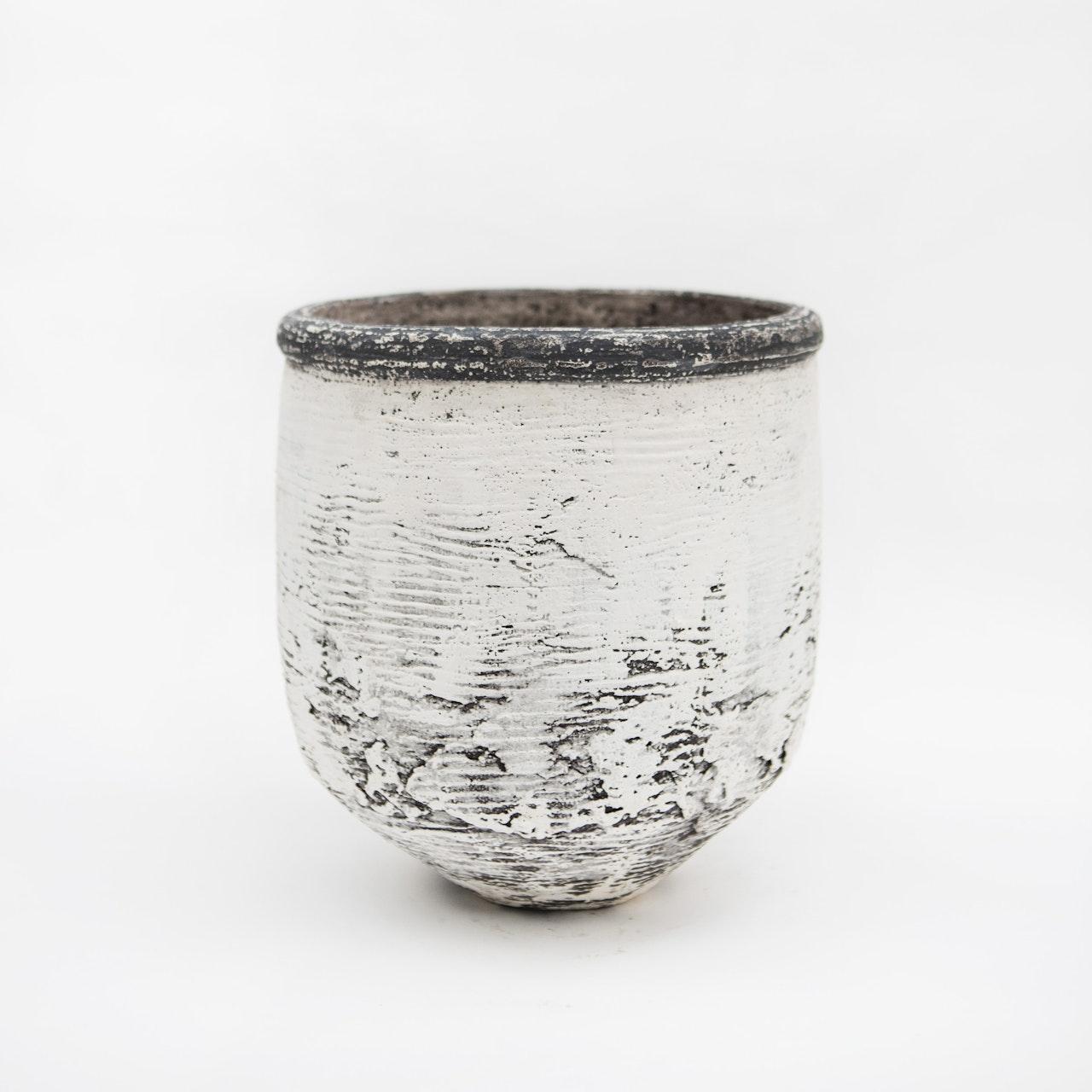Lines & Black rim pot