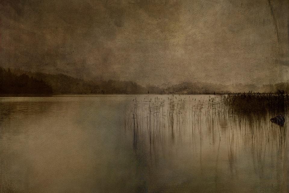 Landscapes - Ålevatten / Eel lake       80x107 cm