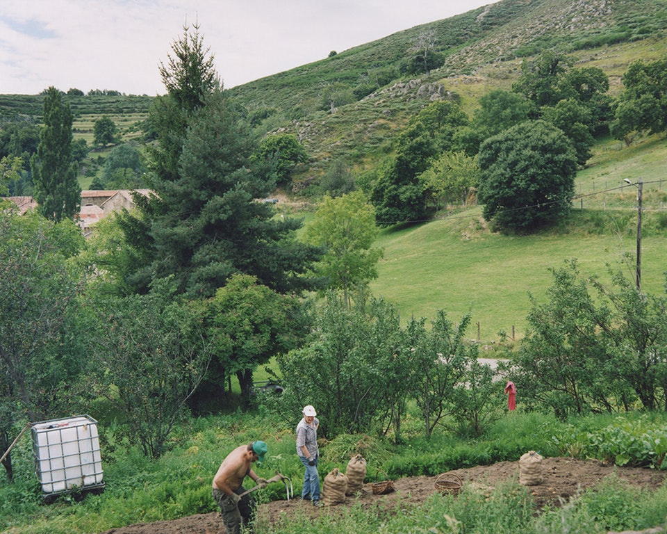 Anthropocène - Ramasseurs de pommes de terre, Intres, 2014 (65x81cm)