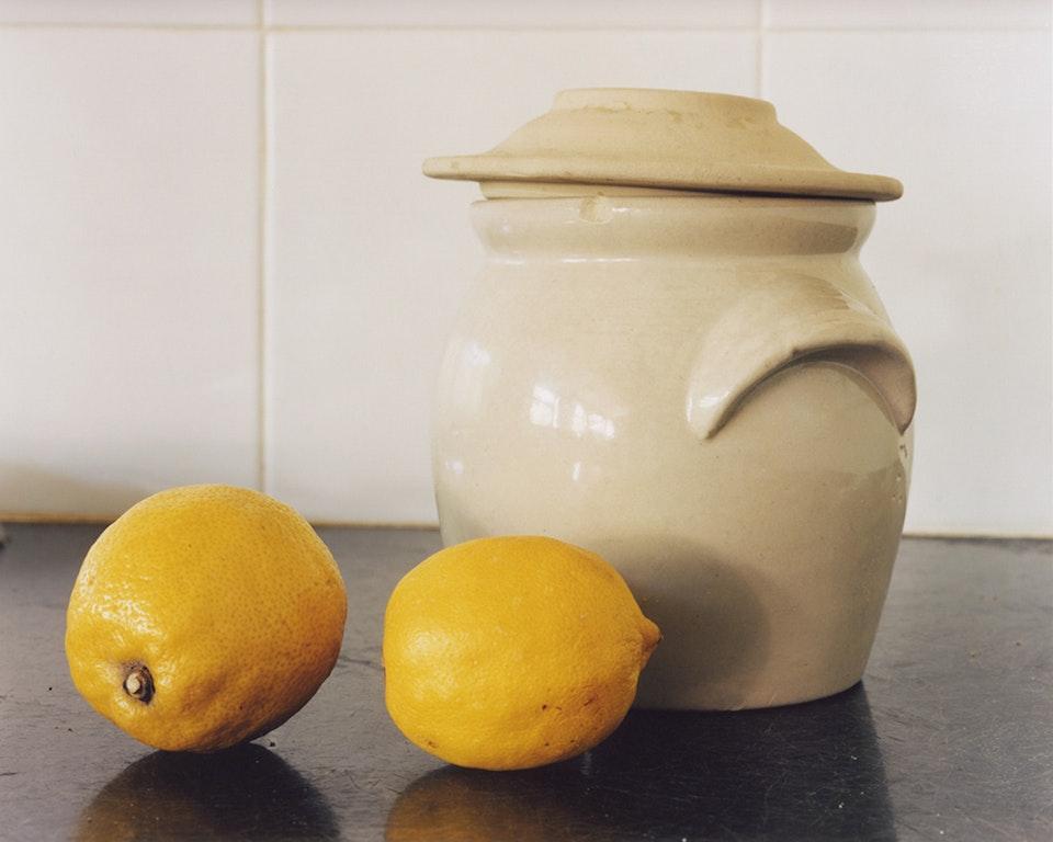 Archétype - Nature morte avec deux citrons, 2004 (47x60cm)