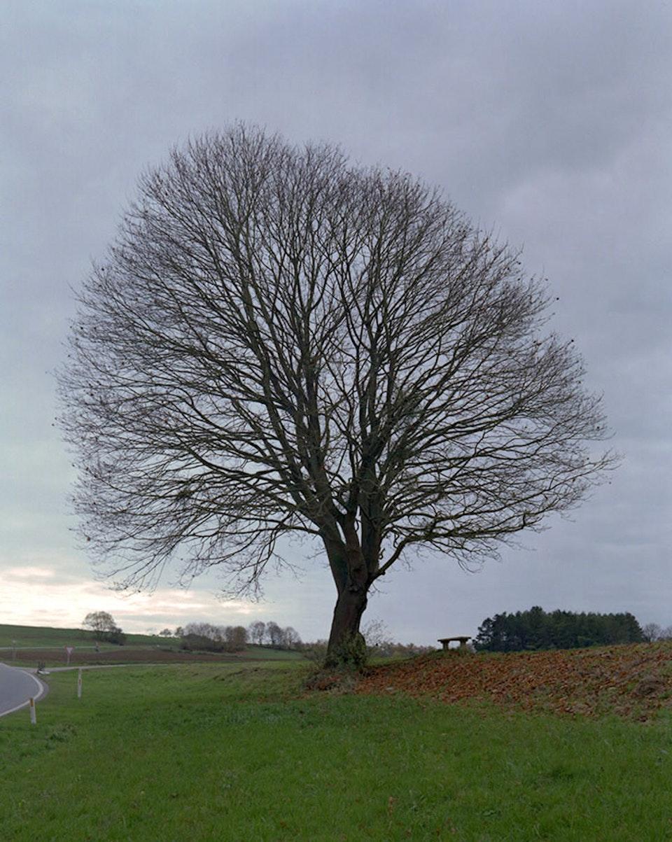 Anthropocène - Freyr, 2013 (non produit)