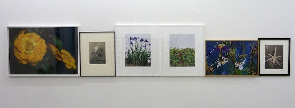 Expositions - 2015, Galerie Alain Gutharc, Paris