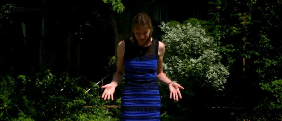 Colour: The Spectrum of Science (BBC4) - COLOUR1thedress