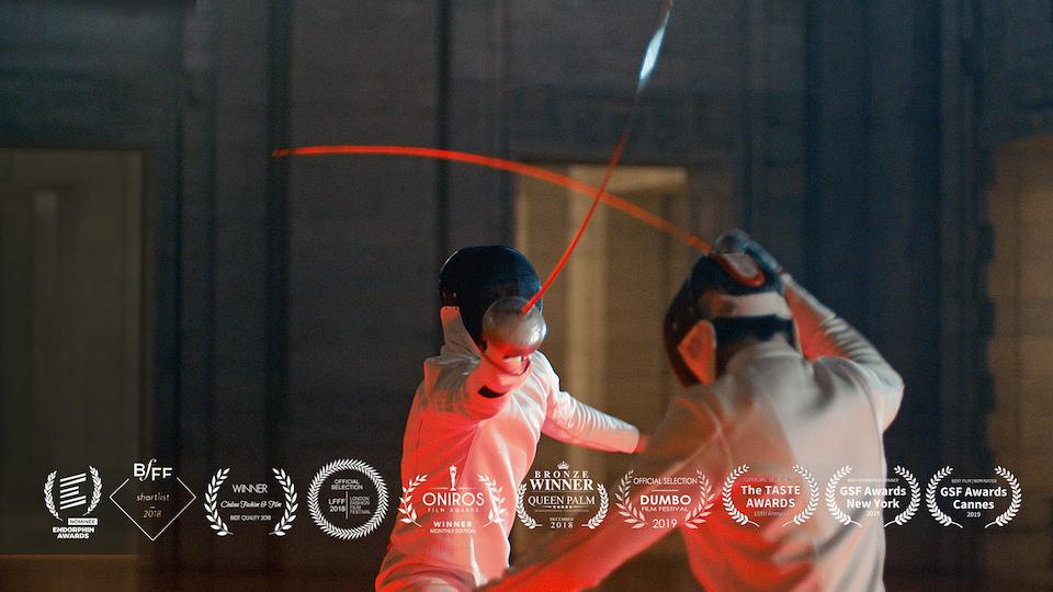 faceoff Fencing -