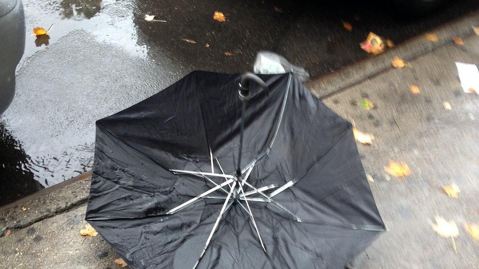 I Lost My Umbrella