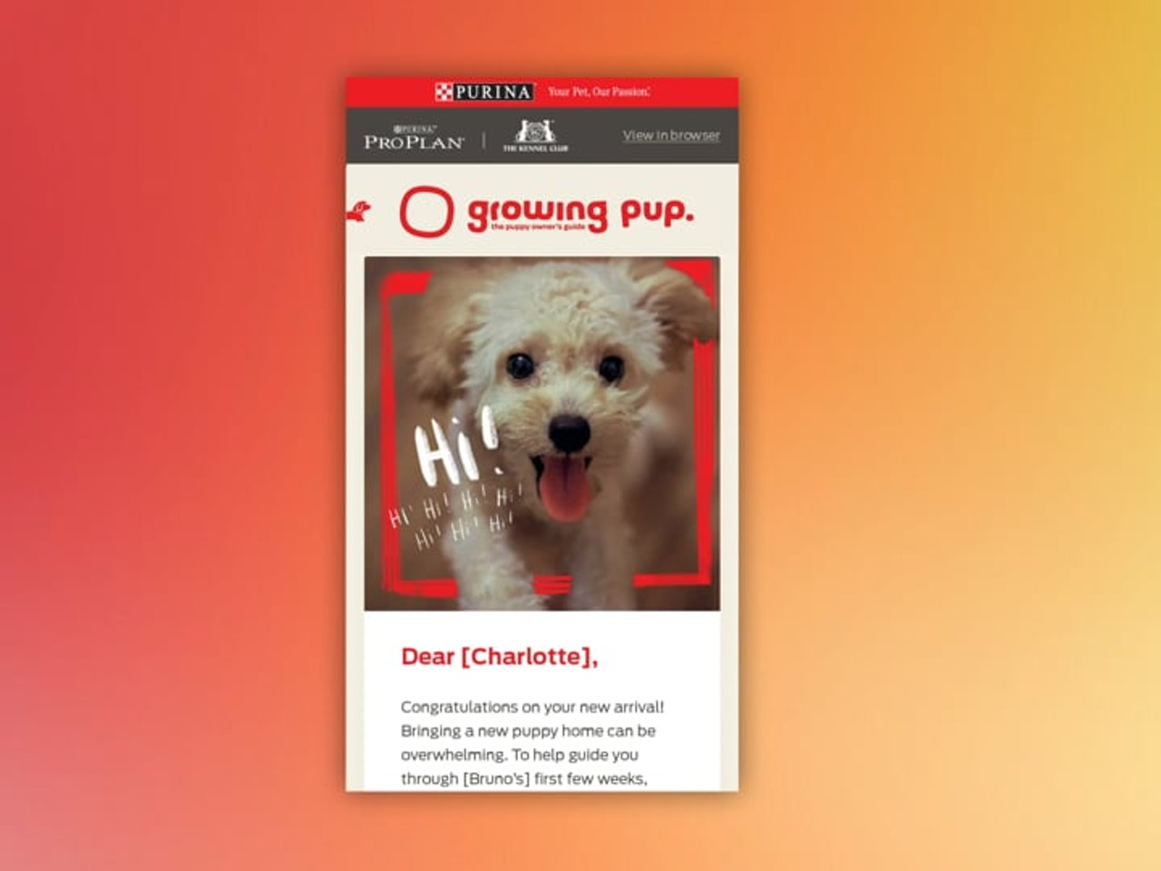 Growing Pup Dog Animation